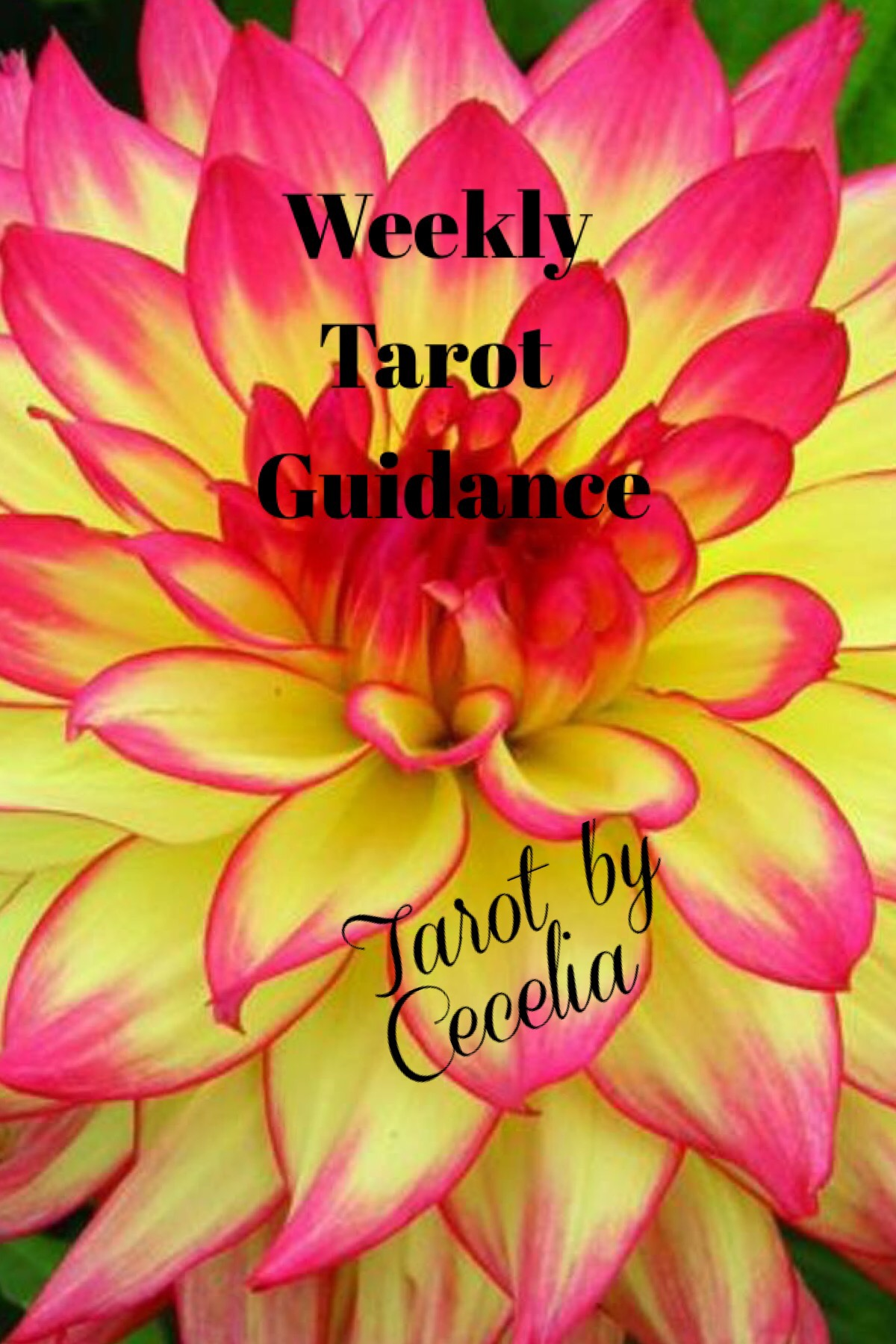 Weekly Tarot Guidance August 1 Through 7 2016 Tarot By Cecelia